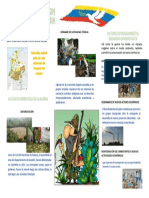 Infografia La Paz y La Proteccion Ambiental en Colombia