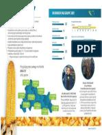 DKC4717 Opis Hibrida PDF