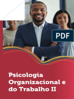 Psicologia Organizacional e do Trabalho II