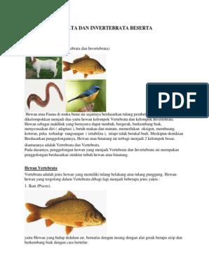 6600 Koleksi Gambar Hewan Vertebrata Dan Avertebrata Beserta Penjelasannya Terbaik