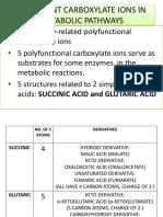 TCA CYCLE.pdf