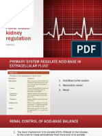 Acid Base Kidney Regulation