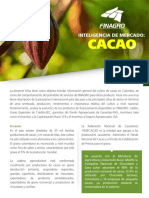 Ficha Cacao Version II