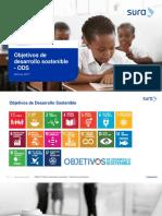 PriorizaciónODS_Fundación