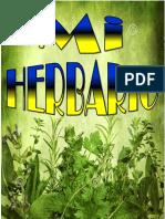 HERBARIO (Autoguardado)
