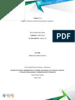 Silvia Julieth Ortiz Motta_ Actividad individual fase 4.docx