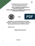 IND-MOG-VILL-2015.pdf