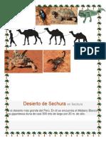 DESIERTOS ARINADOS