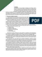ELECTROFORESIS DE PROTEÍNAS.docx
