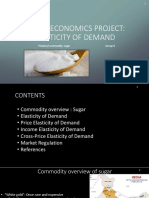 Elastcity of Demand Project Sample (1)