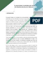 Introduccion documento