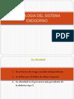semio-endocrino.pptx