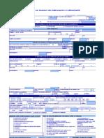 Formato de Reporte Arl e Instructivo (6)
