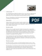 chilean-sea-bass-factsheet.pdf