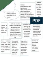 diagrama de flujo biologia.docx