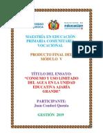 Ensayo Juan Condori U pedagógica Maestría.docx