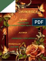 Informe Ofimatica