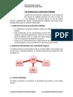 Alcanace de Trabajo de La Auditoria Forense 14ago2019