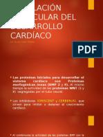 Regulación Molecular Del Desarrollo Cardíaco