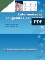 Enfermedades Congénitas Del Recién Nacido