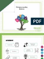 Presentación de PowerPoint PA