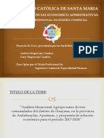 Presentación - Tesis.pptx