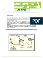 Las-Aves