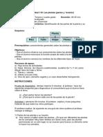 Guia las plantas partes y función.pdf