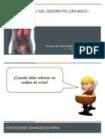 Interpretación Del Sedimento Urinario Hematuria - Welindo