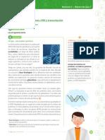 cien_9_b2_p3_est_web.pdf