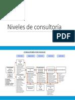 Niveles de Consultoría(1)