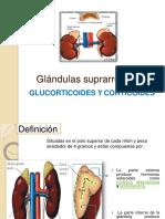 glndulassuprarrenales-120301134039-phpapp02.pptx