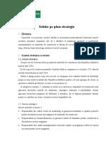 256996960-Schita-Pe-Plan-Strategic.doc