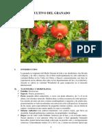 CULTIVO DEL GRANADO_hugo oleaginosa.docx