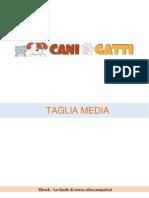 Taglia Media 1