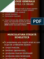 curs 3miologie (2).ppt