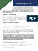 APA_DSM_Cultural-Concepts-in-DSM-5.pdf
