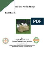 Sheep Facts.pdf