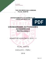 CRONOGRAMA  PATO I - FMH - USMP 2019 - II.doc