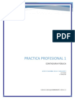 practicaprofesional 1 proyecto.docx