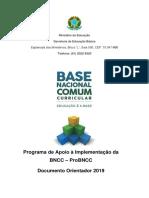Doc Orientador Probncc 2019