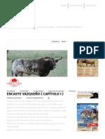 ENCASTE VAZQUEÑO ( CAPÍTULO I ) - Toros de Lidia