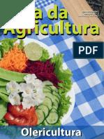 RevistaCA Olericultura Ano18 n2