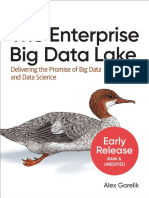 Big Data Lake