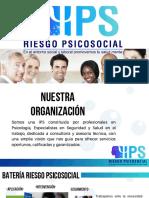 PORTAFOLIO IPS RIESGO PSICOSOCIAL.pdf