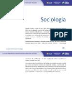 CURRICULO DE SOCIOLOGIA ENSINO MÉDIO