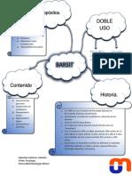 Presentacion BARSIT.pdf