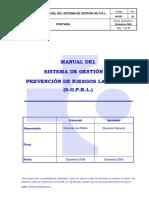 MANUAL DEL SISTEMA DE GESTION.pdf