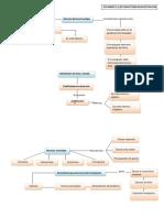Organizadores Graficos (Eleccion de Tema)-Convertido