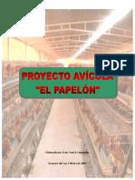 Proyecto Avicola El Papelon
